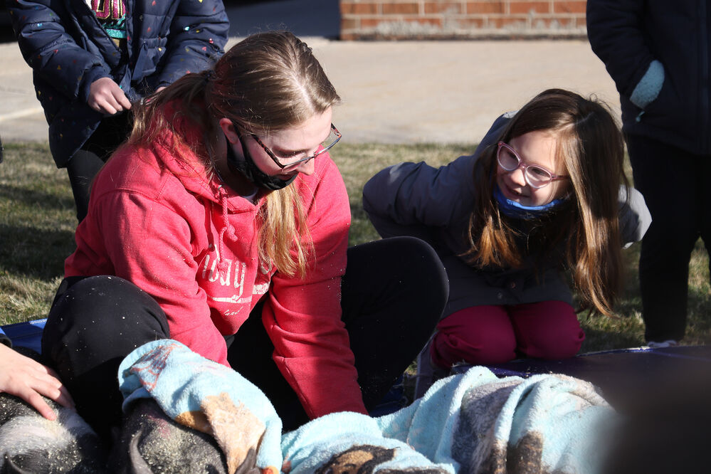 Geil kindergartners get hands-on learning with live animals
