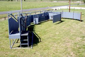 Cattle Working Equipment