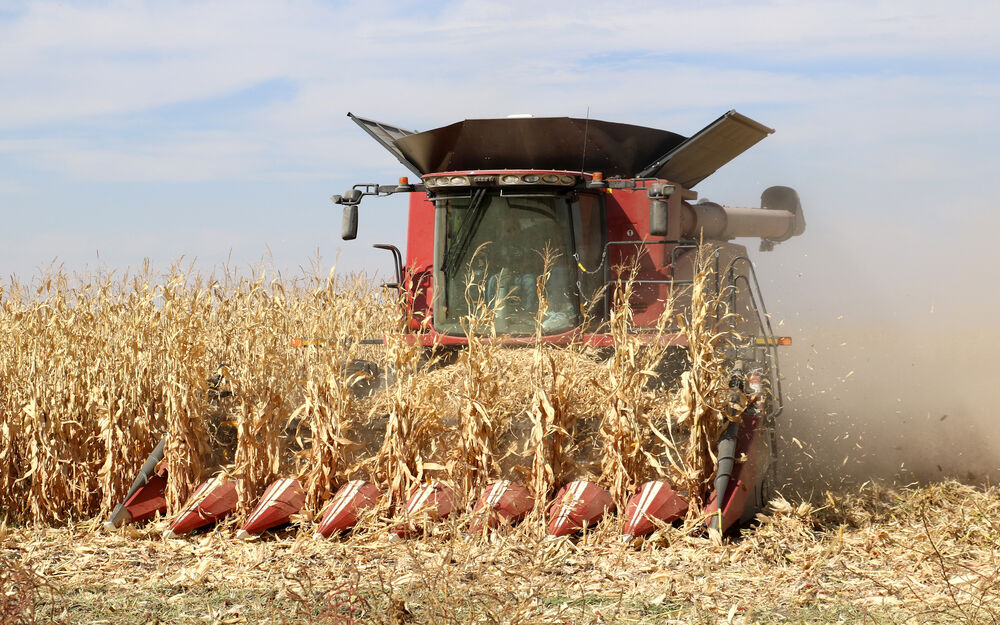 Soil experts recommend leaving crop residue in their fields