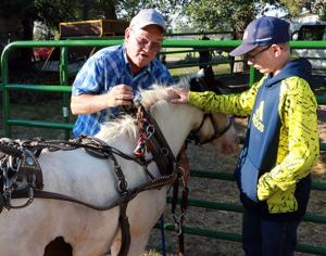 Family-built stagecoach mainstay at parades