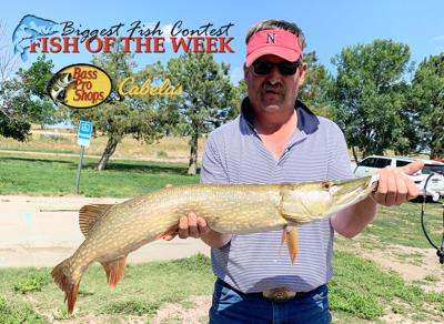 BIGGEST FISH CONTEST: Lodgepole's Wade Dickinson lands 35 1/2 inch Northern Pike