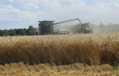Trade agreement with Mexico and Canada big news for Nebraska farmers and ranchers