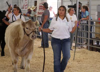 New competitor does well at fair