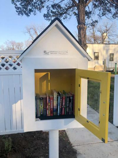 Little Free Library in Lake Dallas