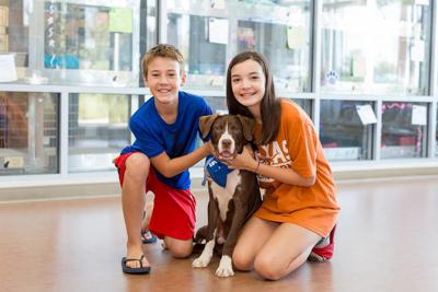Carrollton Clear the Shelters