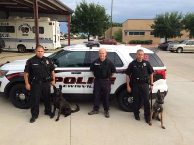 LPD canine