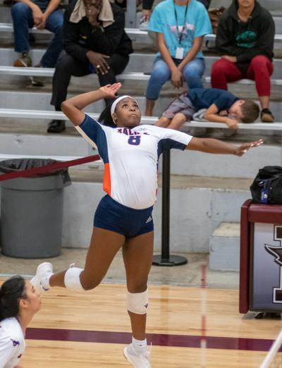 SACHSE VOLLEYBALL ALICIA HEARN