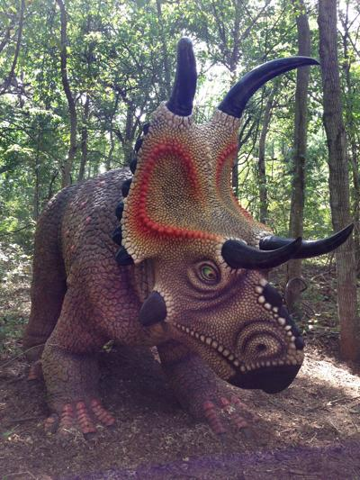 Diabloceratops at the Heard Museum