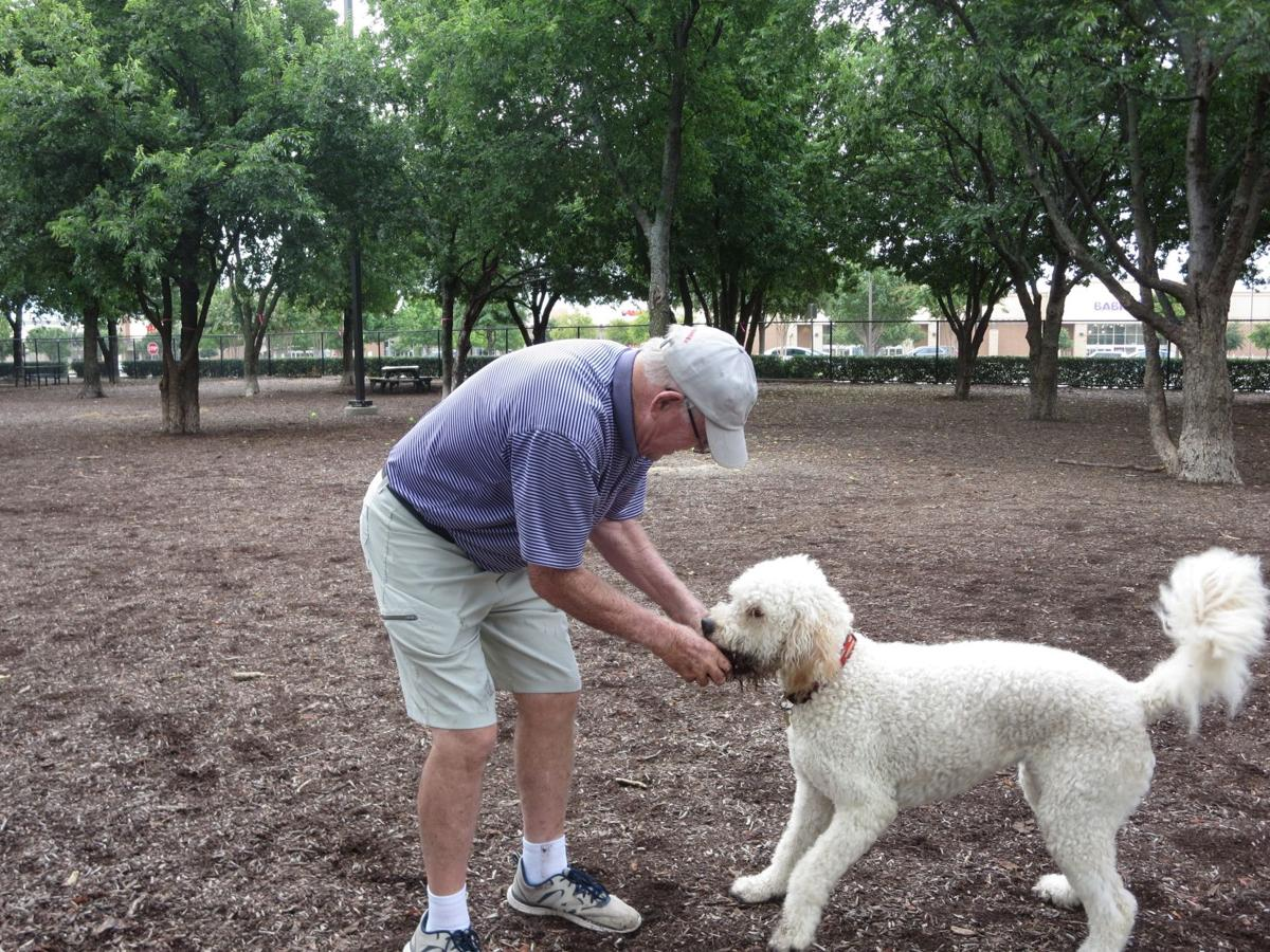 Frisco Commons Dog Park