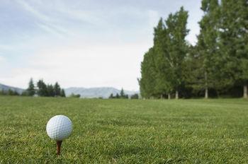 Golf ball wild art