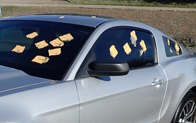 Cheese on cars