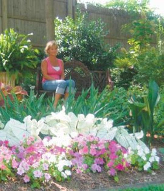 Gardens in Bloom: Families take pride in gardens on this year\'s tour ...