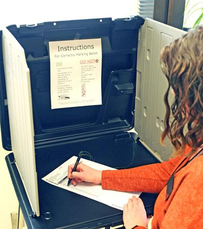 Marking the ballot