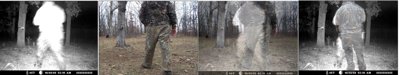 COLUMN:In the Shadows – Oklahoma Trailcam picture