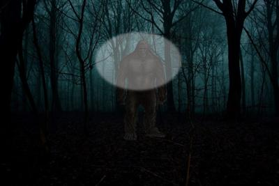 COLUMN: In the Shadows: Hiding in the Shadows