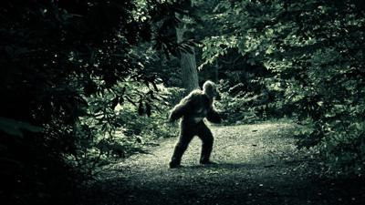COLUMN:In the Shadows – Article 24:Vocal Interactions with a Bigfoot continued