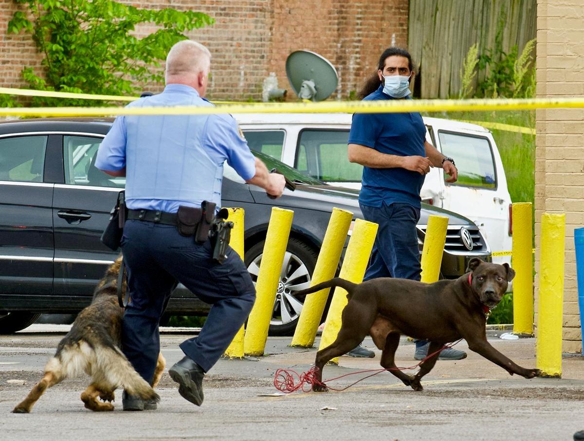 Bringing a gun to a dog fight