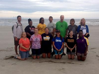 Barrier Islands and Sea Turtles Ecology