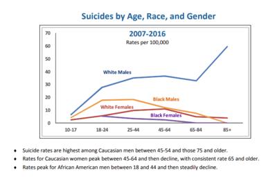 Suicides graph