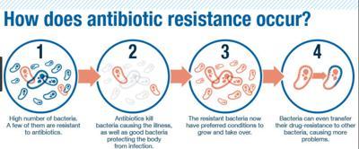 Antiobiotic resistance