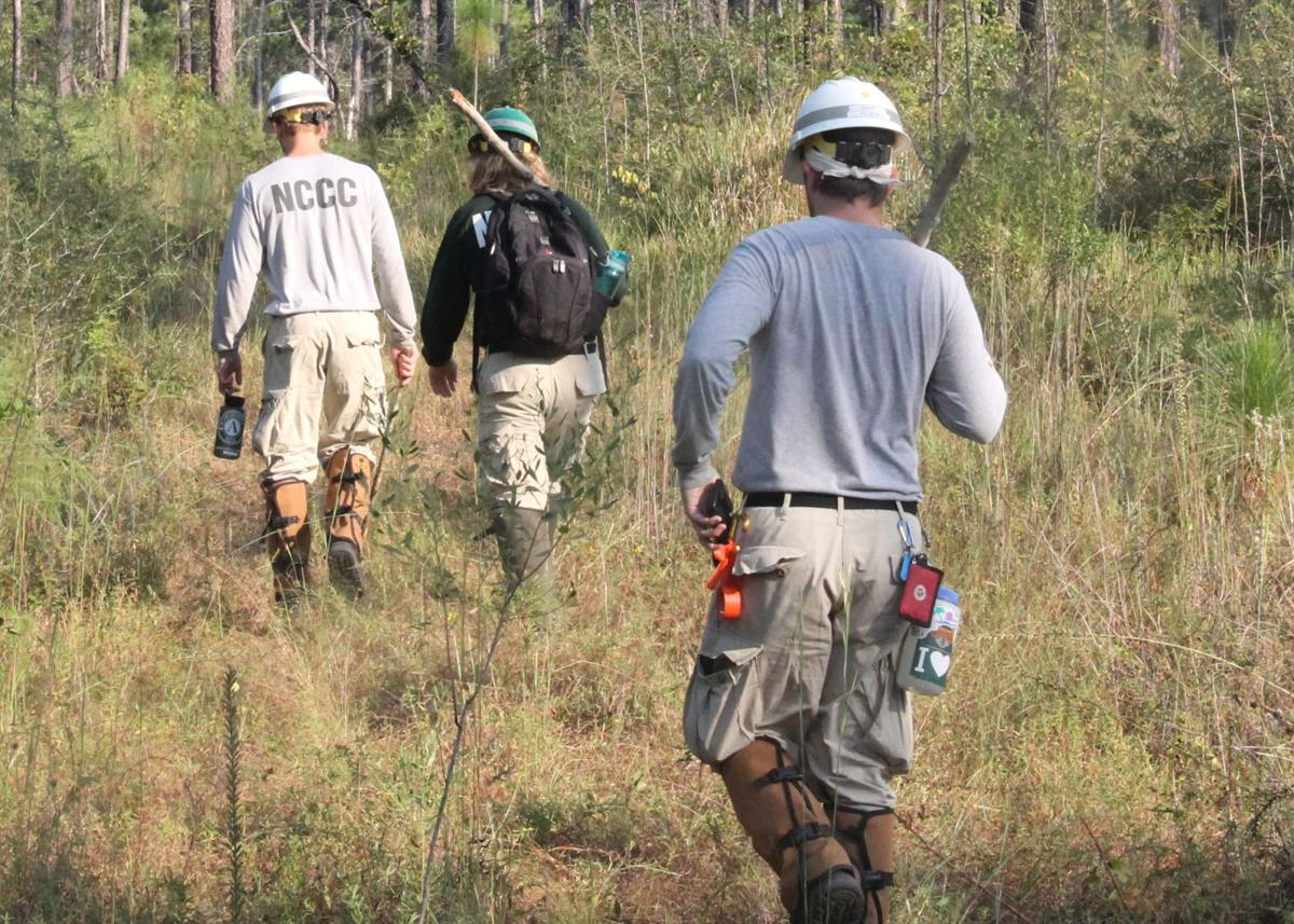 Hiking an ATV trail at De Soto National Forest