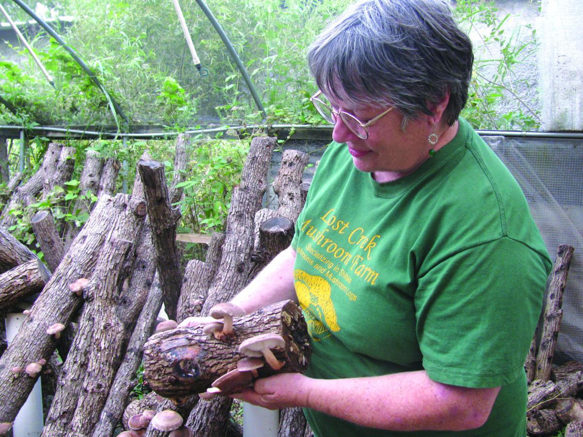 Sandra Williams with Mushroom Log