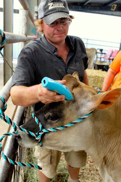 Cream of the crop: Sooner State Dairy Showbrings hundreds of competitors to Stillwater