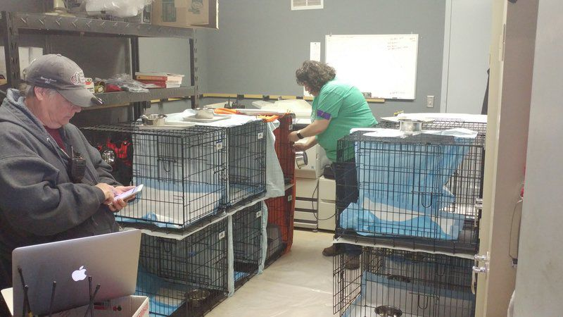 EXPECTING THE WORST: Agencies train to help animals in wake of disaster