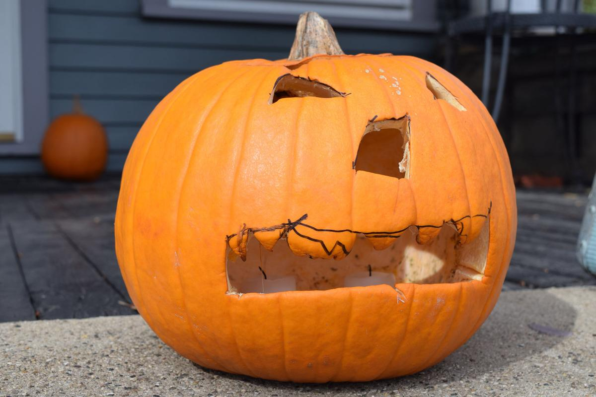 a second life for jack o lanterns post halloween news