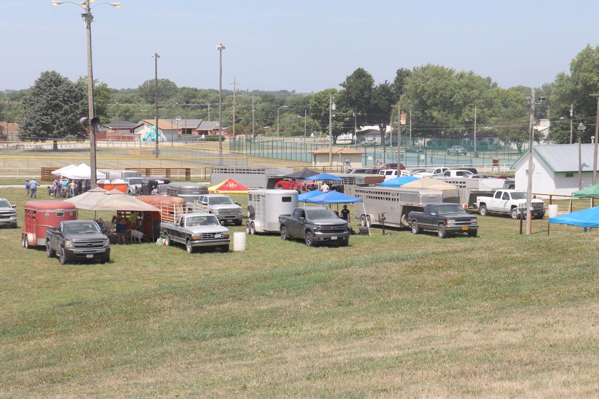 Not Your Typical Cass County Fair Grand Stand