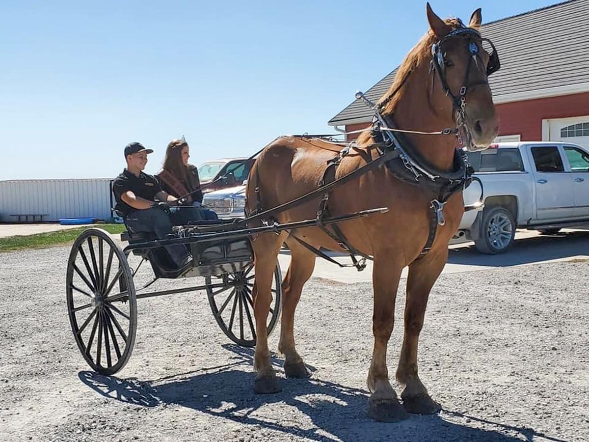 Iowa Angus Tour Makes Stops in Bridgewater, Atlantic
