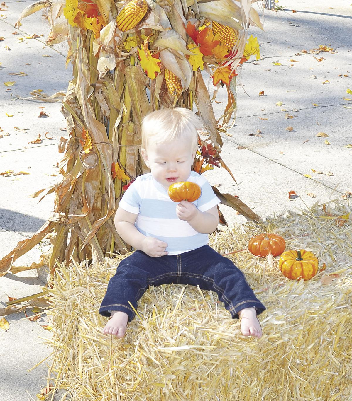Pumpkin Picker?