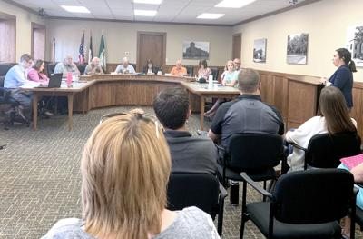 Fleener addresses City Council