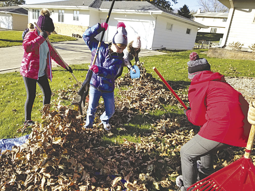 County Wide Clean Up Held