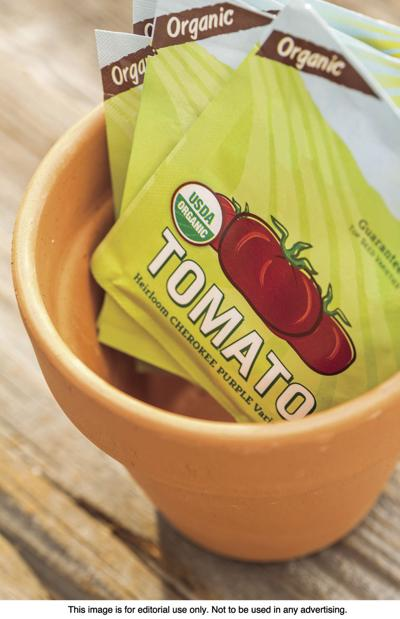 Tips to successfully grow tomatoes