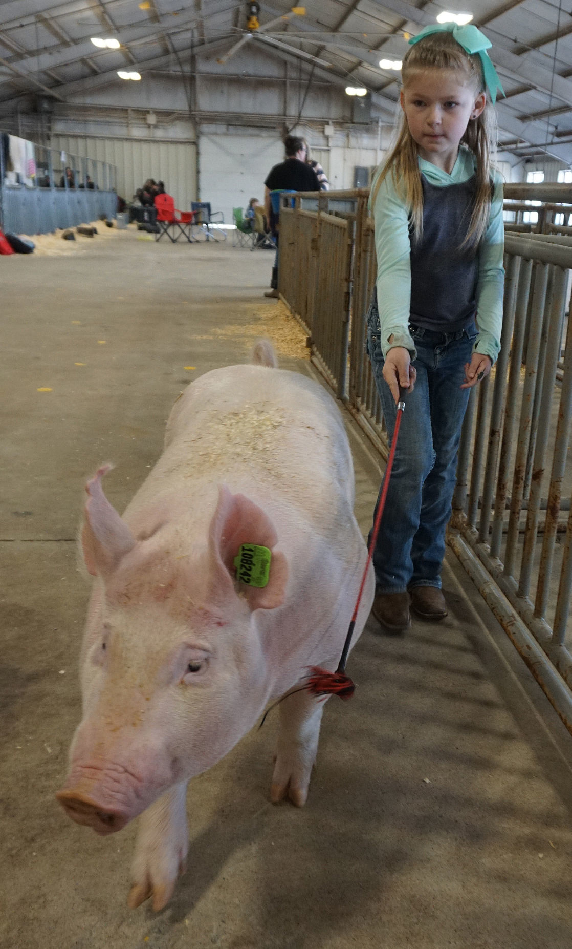 Comanche County Livestock Show
