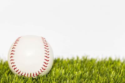 Baseball bug