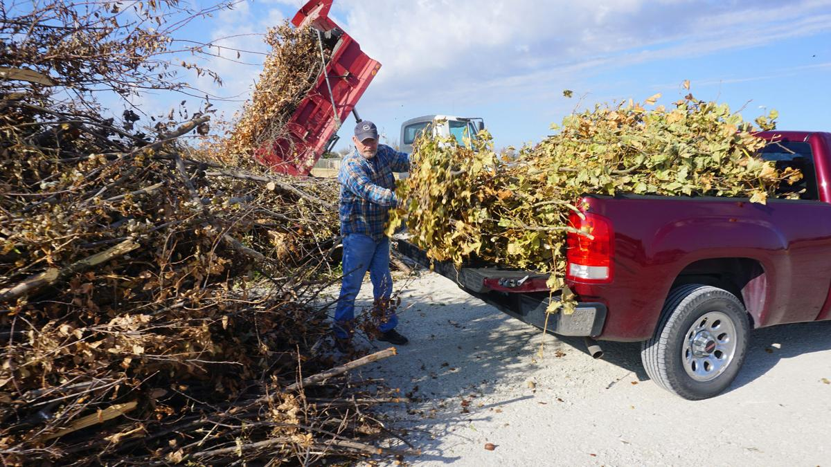 City, residents work to clean up ice storm damage
