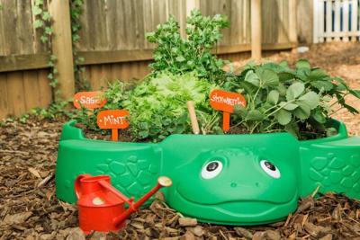 Creating a children's garden