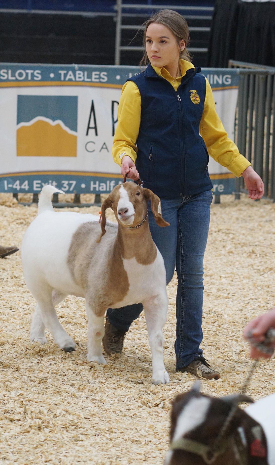 Comanche County Livestock Expo