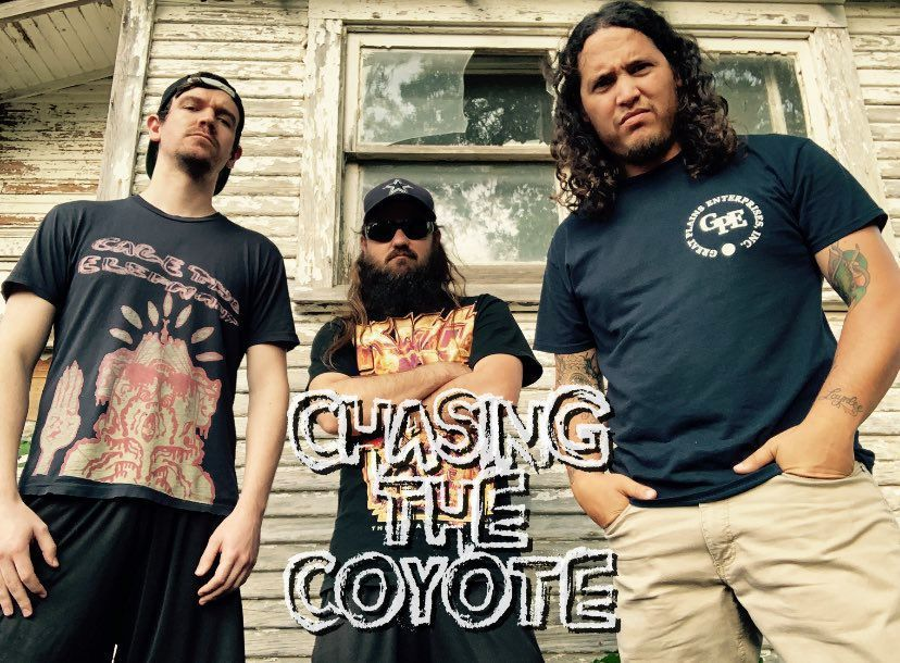Chasing the Coyote