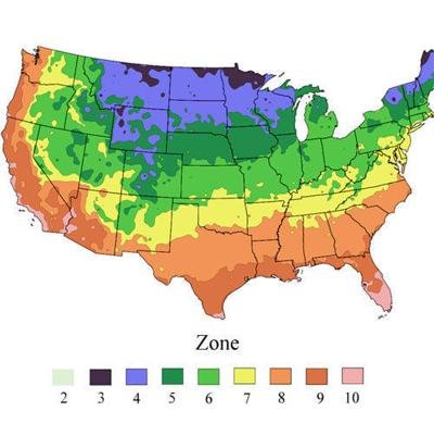 Climate effects on growing plants
