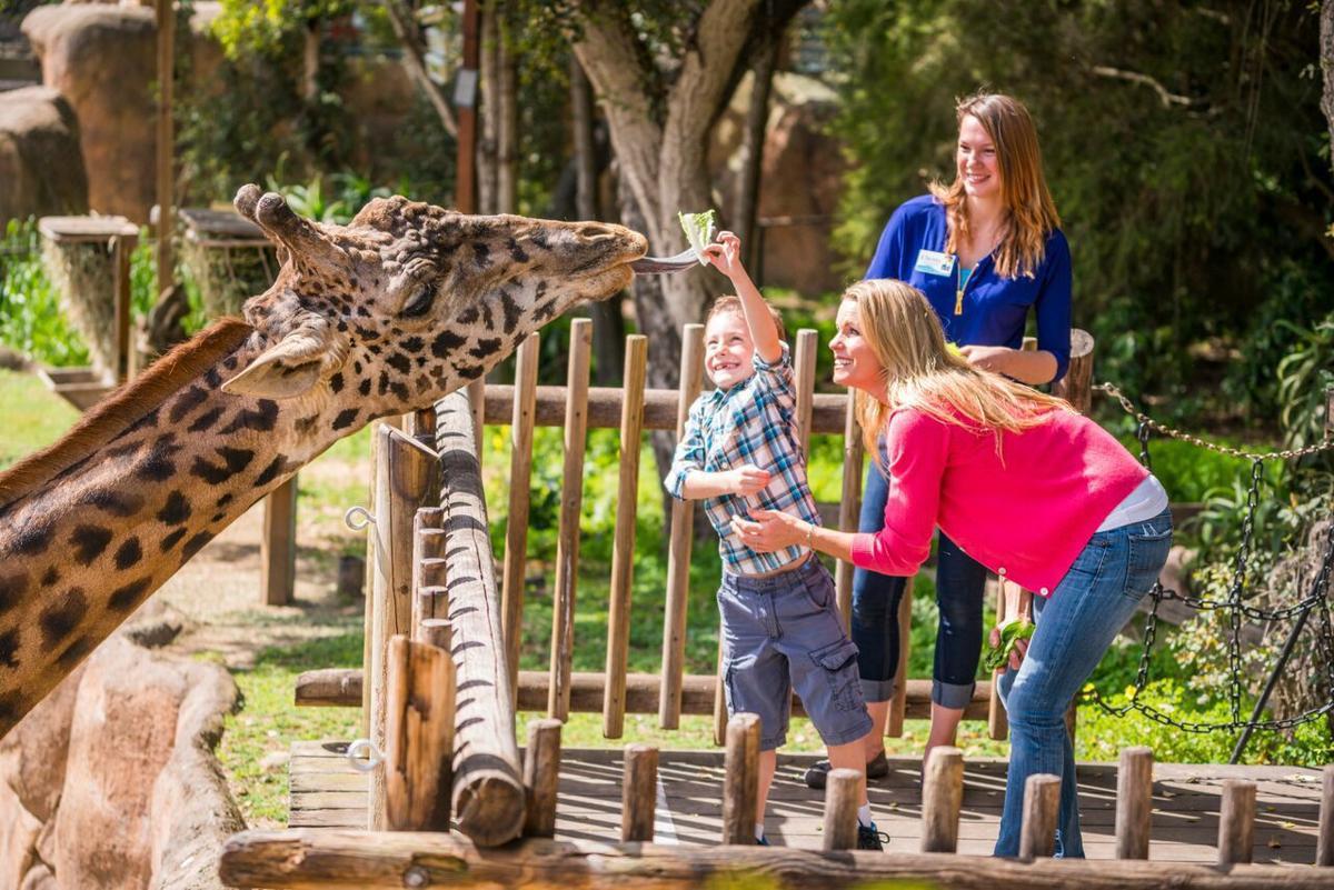 Santa Barbara Zoo 2