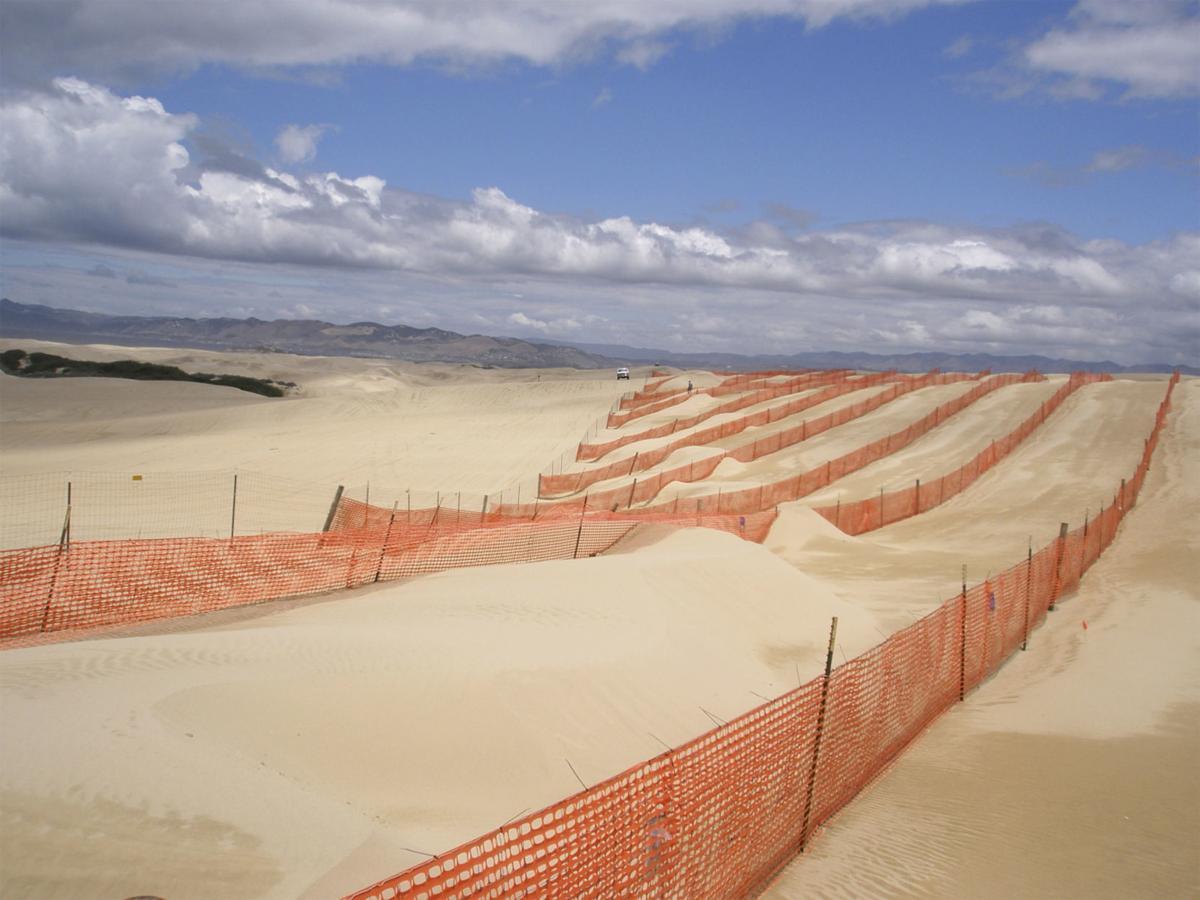 Dunes fencing-1