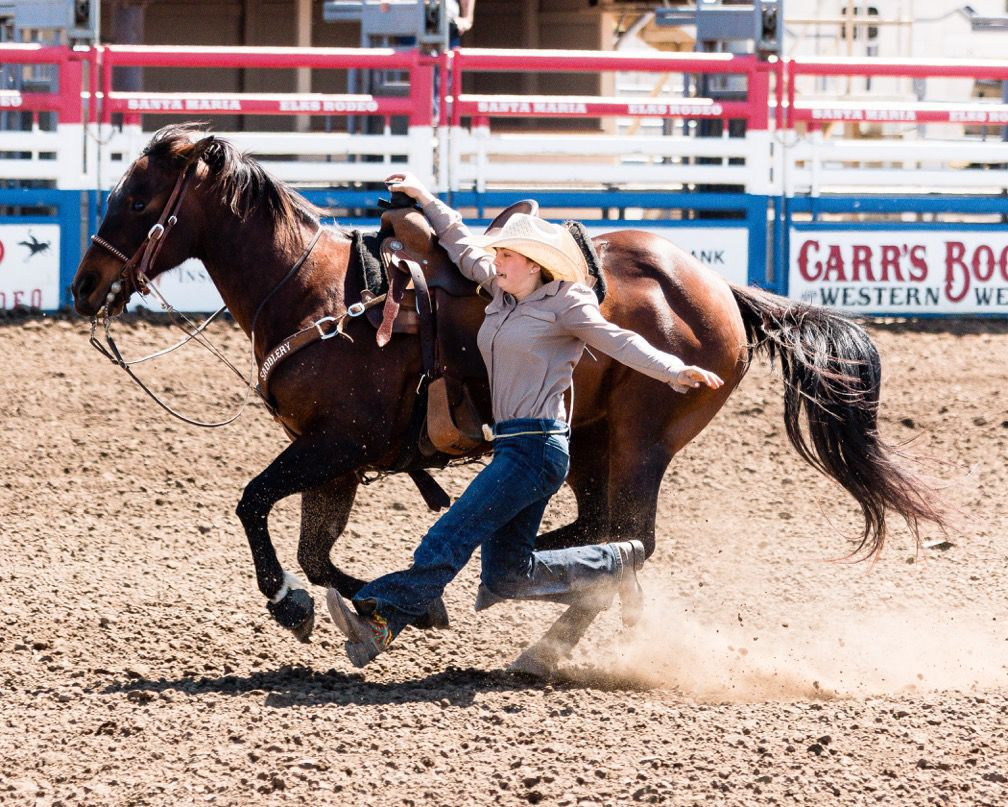 Rodeo Magnificent 7 Sending 7 To National Junior High