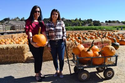 Solvang Farmer Pumpkin Patch: Three generations and growing
