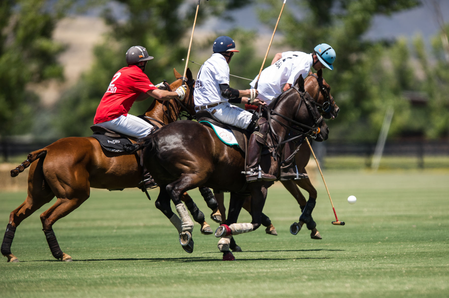 Discussion on this topic: Yesha Camile (2009), sue-sally-hale-legendary-american-polo-pioneer/