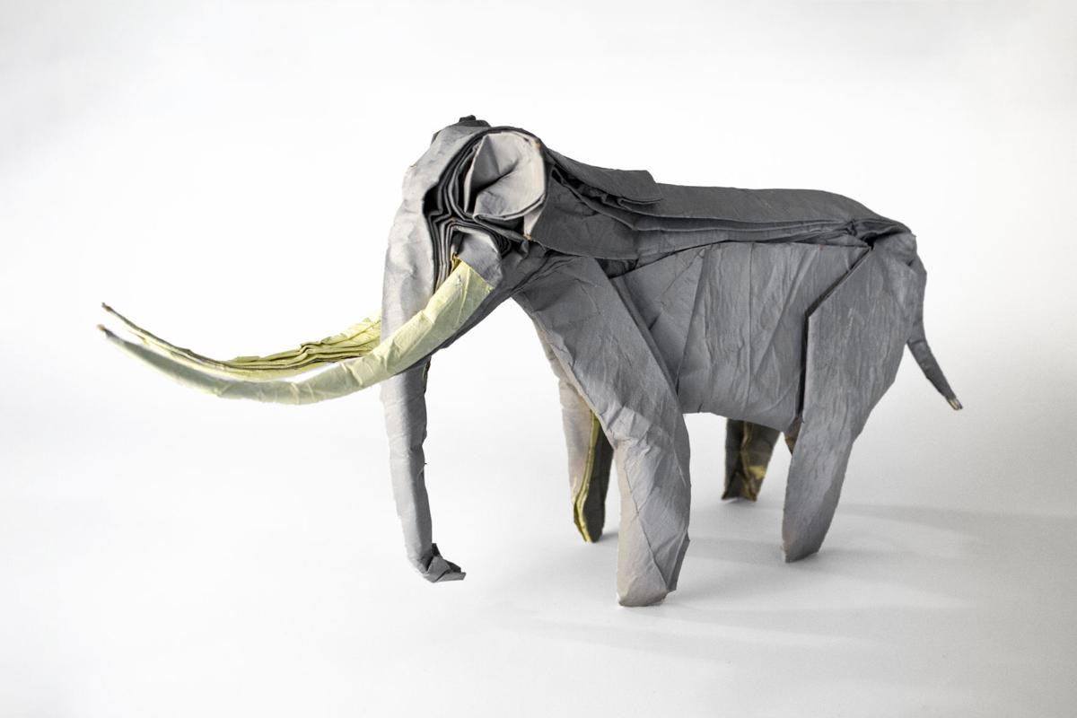 Wilding Museum Presents Folded Art: Origami Animals by Robert Salazar