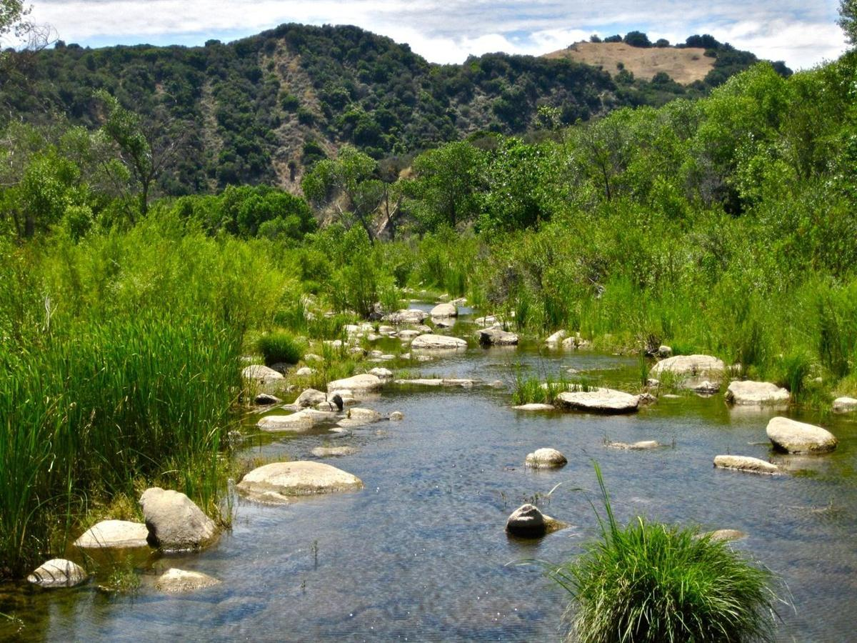 Lecture explores santa ynez river watershed valley life syvnews lecture explores santa ynez river watershed freerunsca Gallery