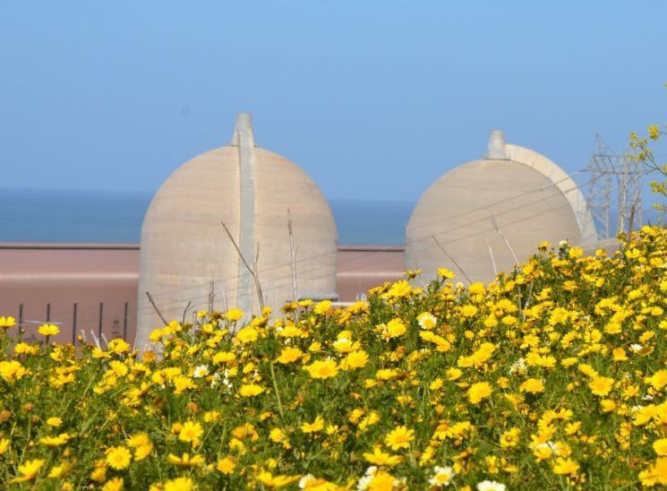 Diablo Canyon Power Plant twin reactors